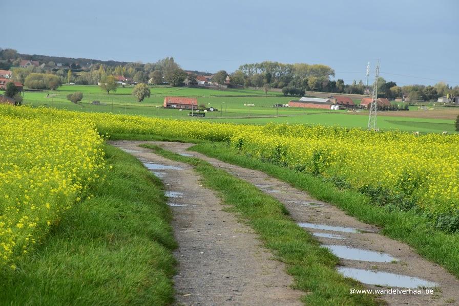 Kruisekewandelroute: een verhaal van glooiingen en bultige slagvelden