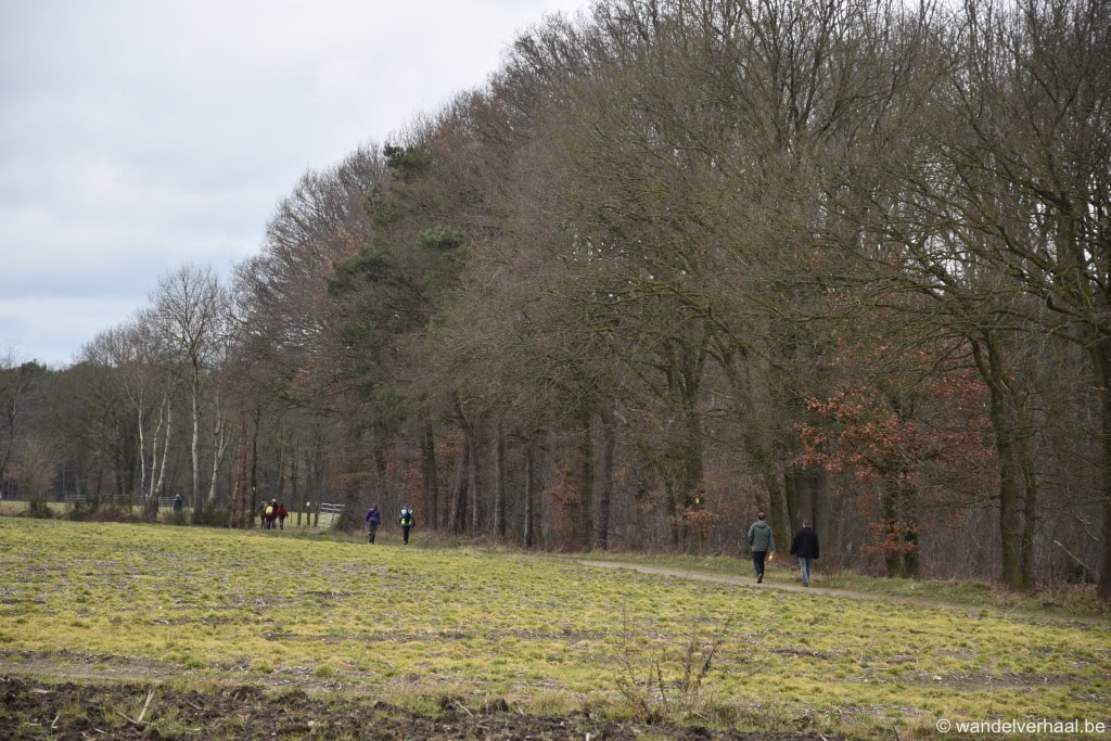 Peer, het klokhuis van landelijk Limburg