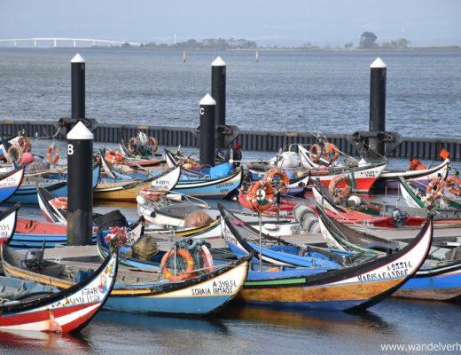 De Ria de Aveiro en haar vissersdorpen